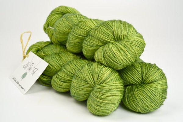 Le Vert Adam - Merisoie